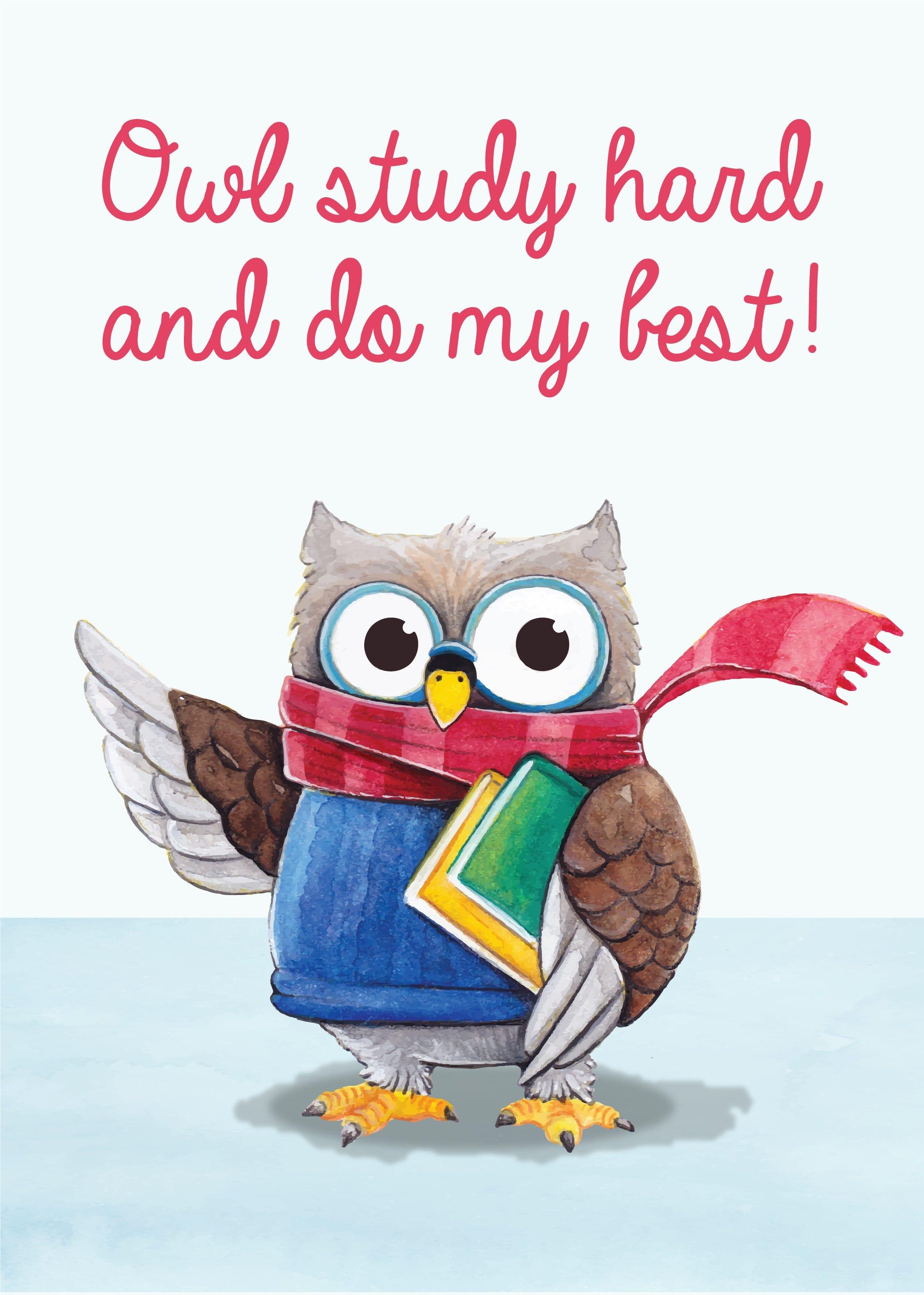 Owl Study Hard